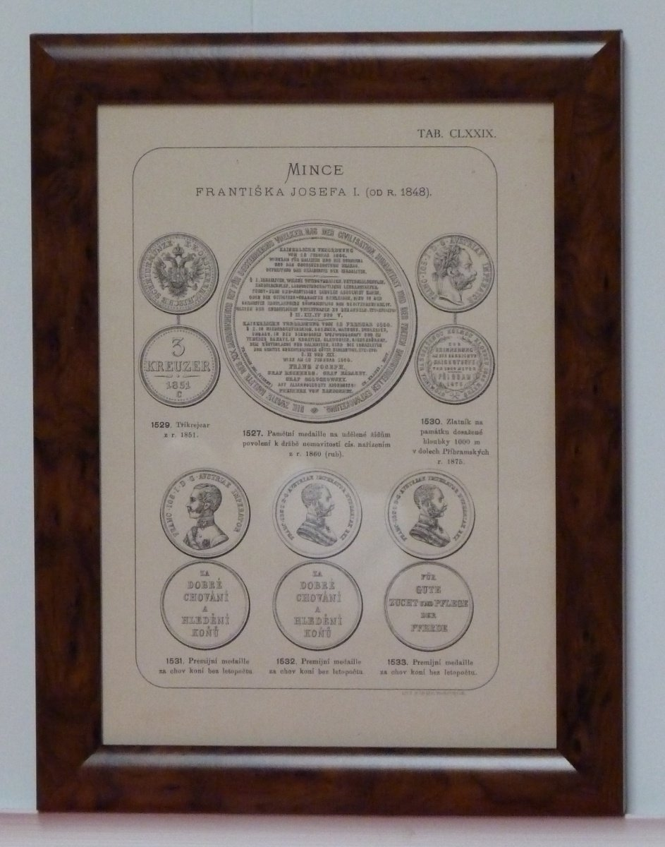Obraz mincí Františka Josefa