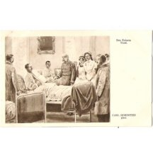 Visit of emperor Franz Joseph in military hospital