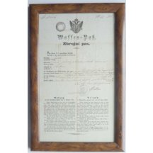 Firearms license for weapons